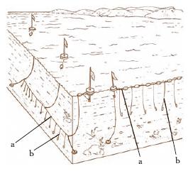 PALAMITO - Nella parte sinistra, p. per pesca di fondo; in quella destra, p. per...