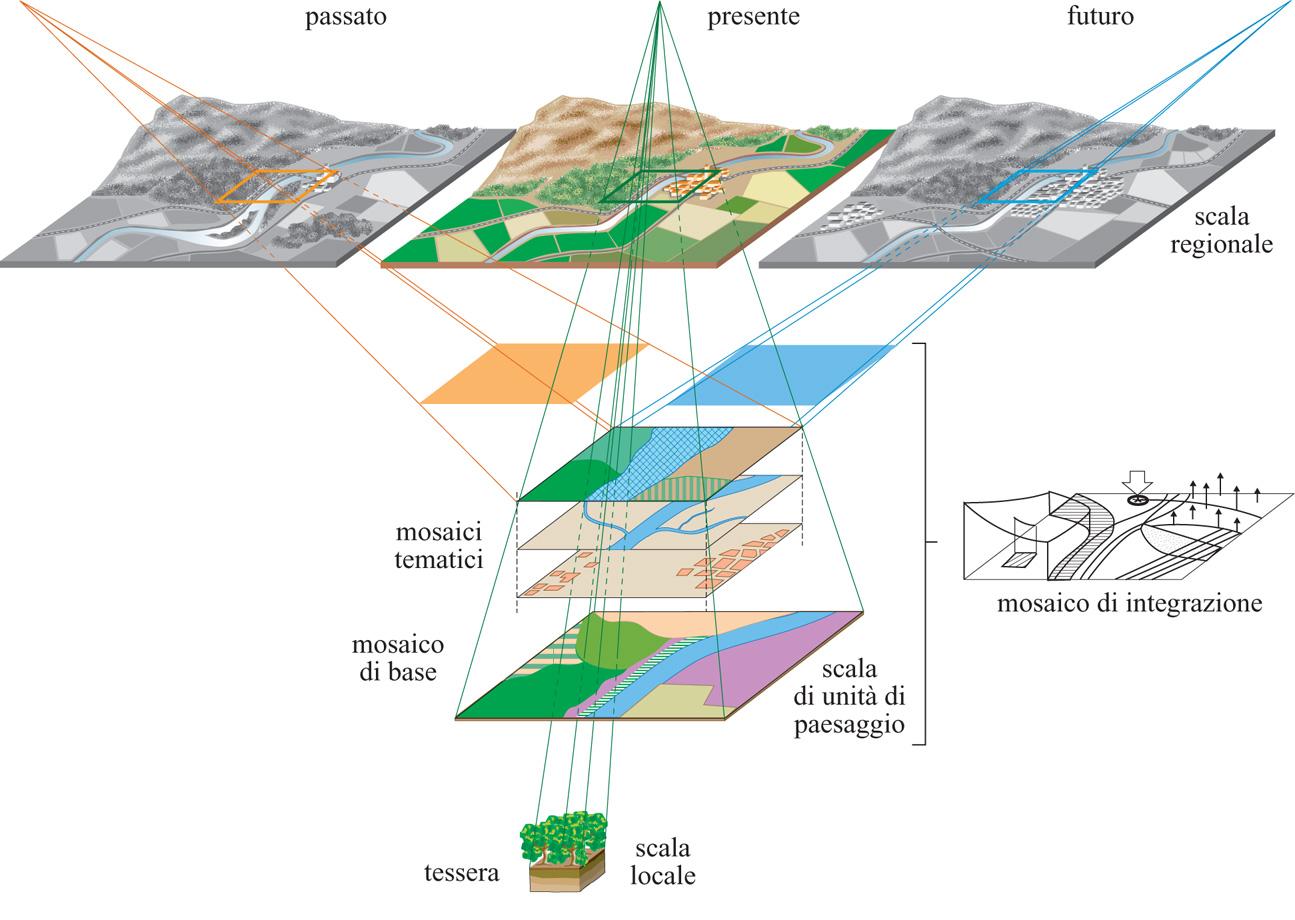 """Célèbre Ecologia del paesaggio in """"Enciclopedia della Scienza e della Tecnica"""" LV11"""