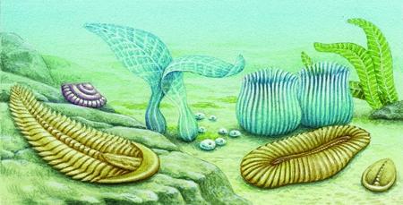 Ere geologiche in enciclopedia dei ragazzi - Animali terrestri per bambini ...