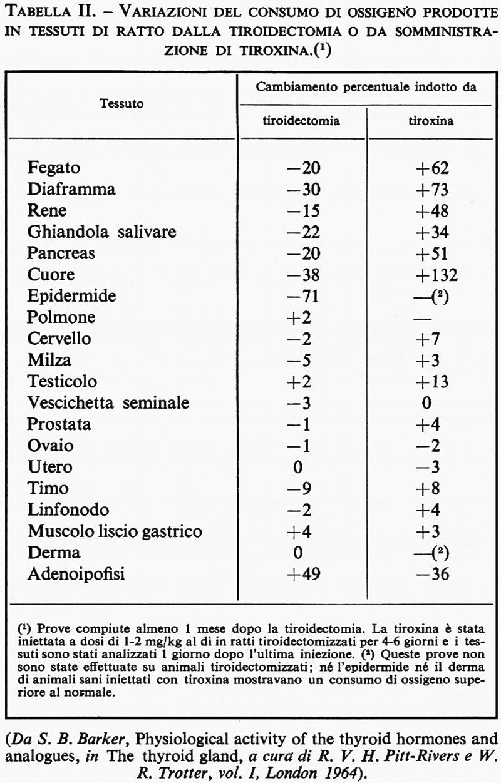 preparati ormonali per la crescita del pene durante lerezione