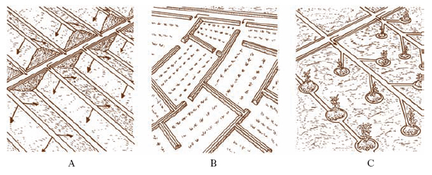 Irrigazione Nell Enciclopedia Treccani