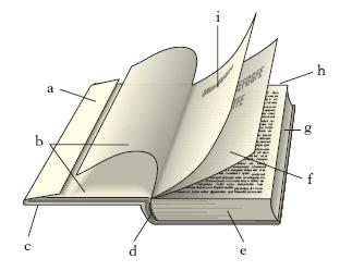 Libro nell 39 enciclopedia treccani for Foto di un libro