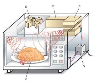 Schema elettrico di un forno a microonde fare di una mosca - Forno elettrico con microonde ...