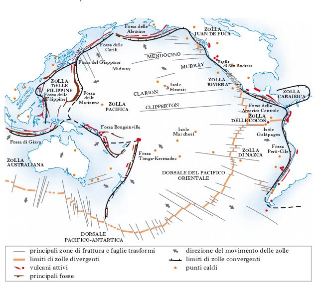 Pacifico oceano nell 39 enciclopedia treccani - Immagini del cardellino orientale ...