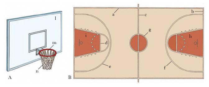 Pallacanestro nell 39 enciclopedia treccani - Immagini stampabili di pallacanestro ...